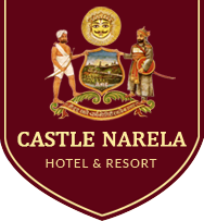 Castle Narela logo - Heritage Hotel and Heritage Resort in Chittorgarh